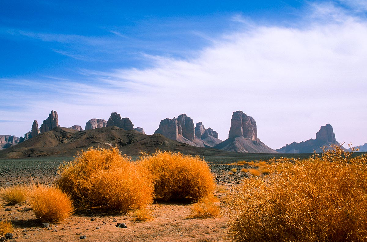 Afara-desert-Sahara-zeriba-voyage