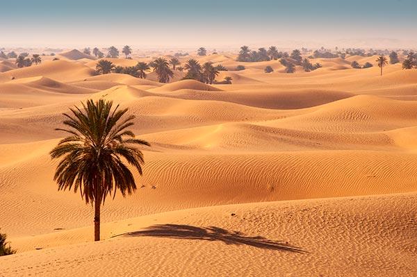 Grand-Erg-Occidental-Desert-Sahara-Zeriba_Voyage