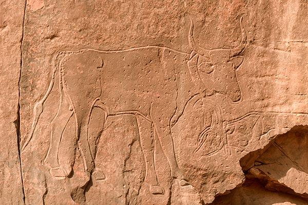 Sahara-peinture-rupestre-Tadrart-Desert-zeriba-voyage-2